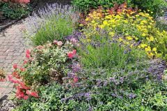 Garten-von-Sabine-Hochrain-2021