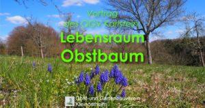 """Vortrag """"Lebensraum Obstbaum""""  - OGV Karlstein @ Mainperle"""