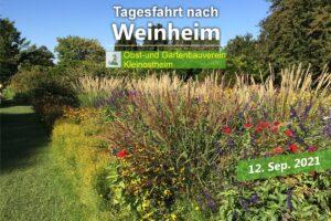 Fahrt nach Weinheim