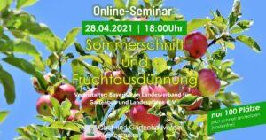 """Online-Seminar """"Sommerschnitt und Fruchtausdünnung"""" des Bayerischen Landesverbandes für Gartenbau und Landespflege e. V."""