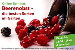 """Online-Seminar """"Beerenobst – die besten Sorten im Garten"""""""