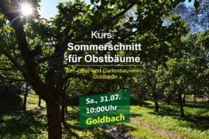 Sommerschnittkurs in Goldbach @ Waldfriedhof Goldbach