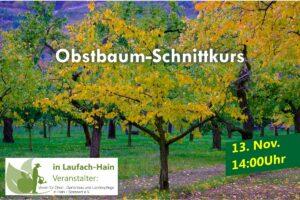 Obstbaumschnittkurs beim OGV Hain @ Gelände des OGV Hain